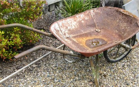 Alowyn Gardens - Old wheel barrow