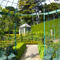 Hedges and wrought Iron Structures everywhere at Beleura