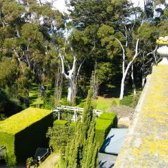 View from over the balcony at Beleura