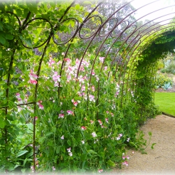 Another metal archway - very informal but effective