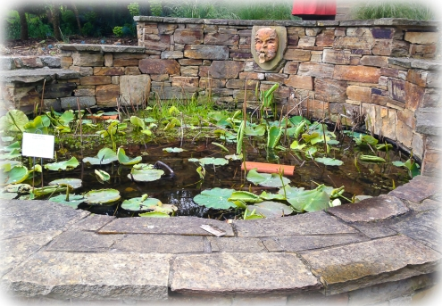 Pond with stonework and lillies