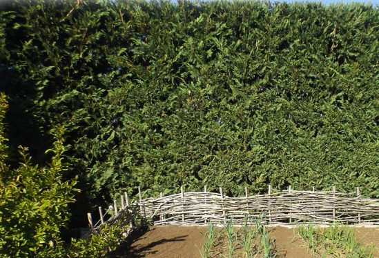 Stonefields by Paul Bangay - Willow Fence inspiration for kitchen garden