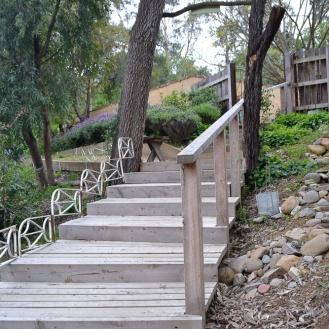 The Woodland Boardwalk
