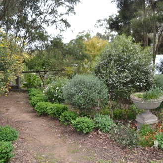 Behind the Wattle walk and the Chook Pen