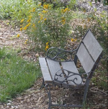 Seat near the Perennial Garden