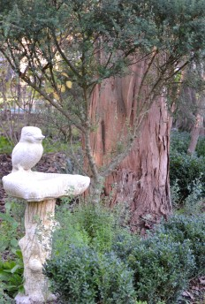 Kookaburra Bird Bath